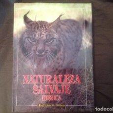 Libros de segunda mano: NATURALEZA SALVAJE IBÉRICA JOSÉ LUIS G. GRANDE ALBE PRODUCCIONES 1993 LIBRO DE FOTOGRAFÍAS. Lote 94332750