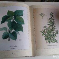 Libros de segunda mano: VUESTRO HERBARIO. Lote 95047783