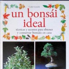 Libros de segunda mano: UN BONSÁI IDEAL TÉCNICAS Y SECRETOS PARA OBTENER Y CONSERVAR BONSÁIS EN CASA. Lote 95237271