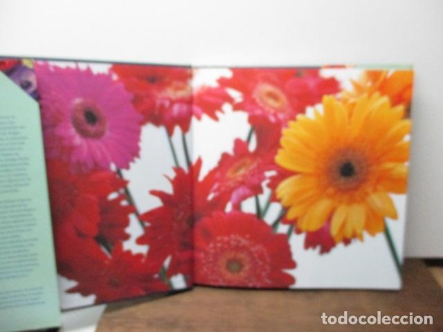 Libros de segunda mano: flores ideas frescas para decorar la casa, Paula Pryke - 2000 - Ed- RBA - Foto 20 - 263100095