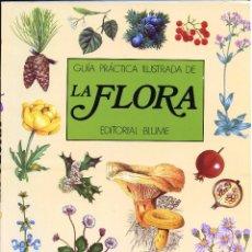 Libros de segunda mano: GUÍA PRÁCTICA ILUSTRADA DE LA FLORA - BLUME 1984. Lote 95867807