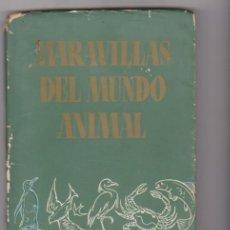 Libros de segunda mano: MARAVILLAS DEL MUNDO ANIMAL . SELECCIONES DEL READER´S DIGEST.. Lote 96031859