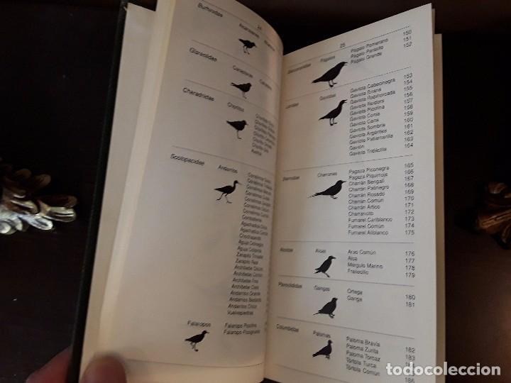 Libros de segunda mano: LA GUIA DE INCAFO DE LAS AVES DE LA PENINSULA IBERICA Y BALEARES . - Foto 3 - 96774819