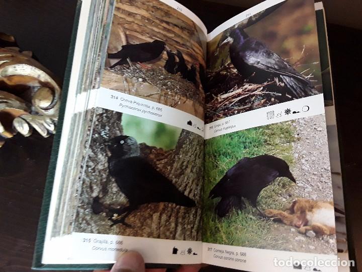 Libros de segunda mano: LA GUIA DE INCAFO DE LAS AVES DE LA PENINSULA IBERICA Y BALEARES . - Foto 4 - 96774819