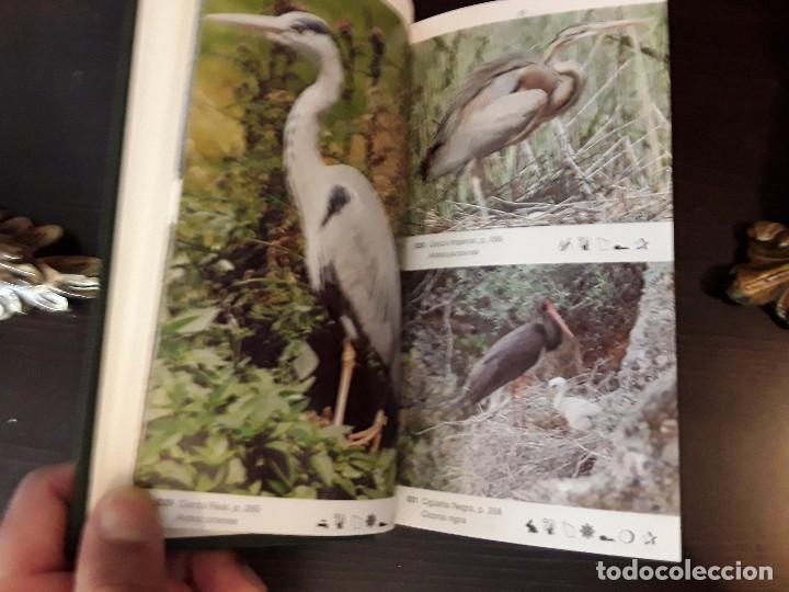 Libros de segunda mano: LA GUIA DE INCAFO DE LAS AVES DE LA PENINSULA IBERICA Y BALEARES . - Foto 5 - 96774819