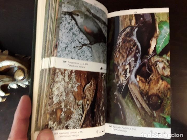 Libros de segunda mano: LA GUIA DE INCAFO DE LAS AVES DE LA PENINSULA IBERICA Y BALEARES . - Foto 6 - 96774819