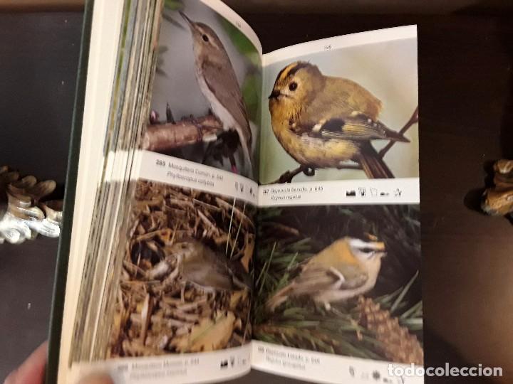 Libros de segunda mano: LA GUIA DE INCAFO DE LAS AVES DE LA PENINSULA IBERICA Y BALEARES . - Foto 8 - 96774819