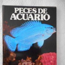 Libros de segunda mano: PECES DE ACUARIO. JANE BURTON. COLECCIÓN LA NATURALEZA. EDICIONES CASTELL. 64 PÁGINAS. 1979. Lote 96873019