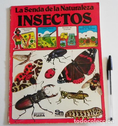 LA SENDA DE LA NATURALEZA - INSECTOS - LIBRO PLESA SM EDICIONES - GUÍA BIOLOGÍA CIENCIAS ESCARABAJOS (Libros de Segunda Mano - Ciencias, Manuales y Oficios - Biología y Botánica)