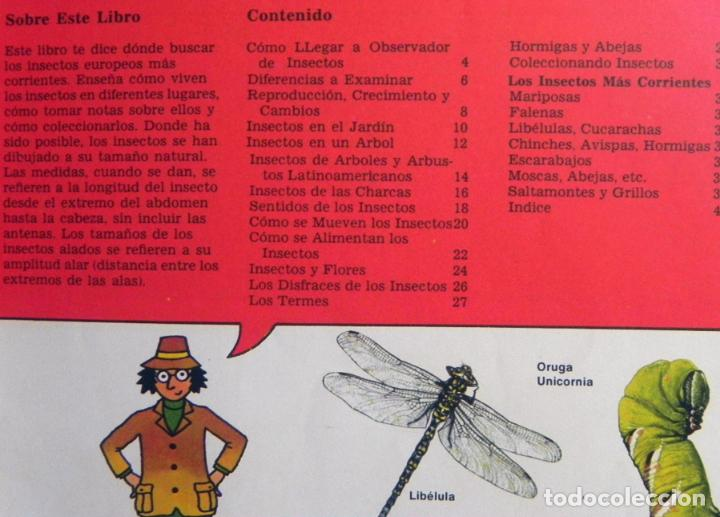 Libros de segunda mano: LA SENDA DE LA NATURALEZA - INSECTOS - LIBRO PLESA SM EDICIONES - GUÍA BIOLOGÍA CIENCIAS ESCARABAJOS - Foto 2 - 97165967