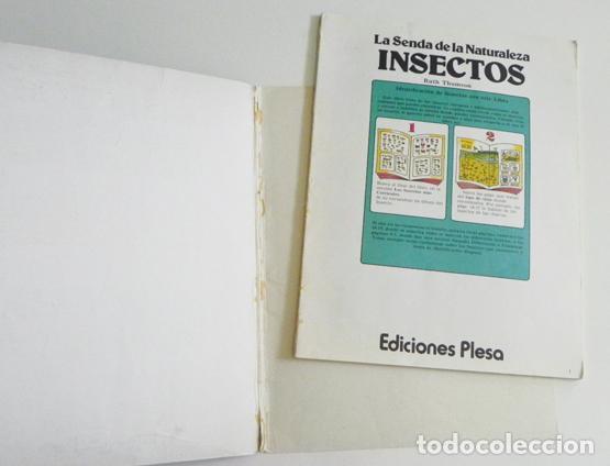 Libros de segunda mano: LA SENDA DE LA NATURALEZA - INSECTOS - LIBRO PLESA SM EDICIONES - GUÍA BIOLOGÍA CIENCIAS ESCARABAJOS - Foto 5 - 97165967