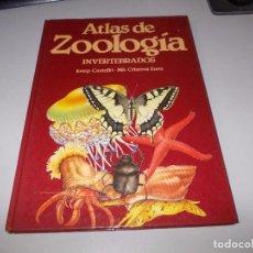 Libros de segunda mano: ATLAS DE ZOOLOGÍA INVERTEBRADOS, JOSEP CASTELLÓ, Mª CRISTINA SANZ. EDIBOOK 1.988. Lote 97307855