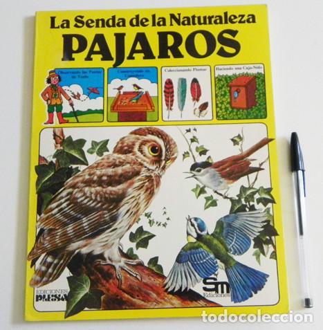 PÁJAROS - LA SENDA DE LA NATURALEZA - ED PLESA SM EDICIONES - LIBRO GUÍA AVES - BIOLOGÍA - MUY ILUST (Libros de Segunda Mano - Ciencias, Manuales y Oficios - Biología y Botánica)