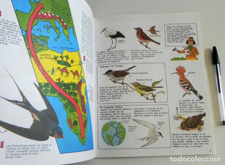 Libros de segunda mano: PÁJAROS - LA SENDA DE LA NATURALEZA - ED PLESA SM EDICIONES - LIBRO GUÍA AVES - BIOLOGÍA - MUY ILUST - Foto 5 - 97461195