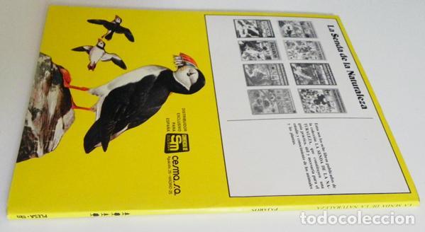 Libros de segunda mano: PÁJAROS - LA SENDA DE LA NATURALEZA - ED PLESA SM EDICIONES - LIBRO GUÍA AVES - BIOLOGÍA - MUY ILUST - Foto 6 - 97461195