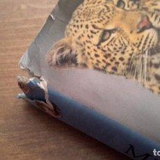 Libros de segunda mano: MI PRIMERA ENCICLOPEDIA DE ANIMALES.. Lote 97668911