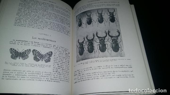 Libros de segunda mano: biologia general / I y II / alvarado - Foto 3 - 97774995