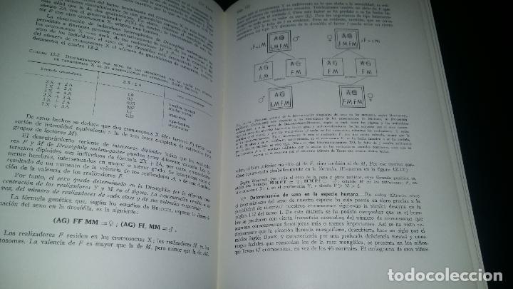Libros de segunda mano: biologia general / I y II / alvarado - Foto 4 - 97774995