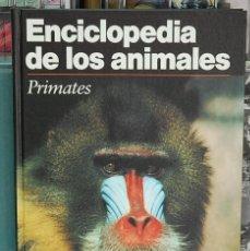 Libros de segunda mano: LMV - ENCICLOPEDIA DE LOS ANIMALES. PRIMATES. Lote 97868343