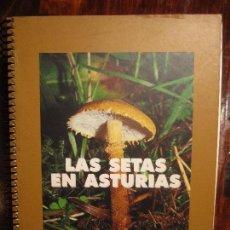 Libros de segunda mano: LAS SETAS EN ASTURIAS. CAJA DE AHORROS DE ASTURIAS, 1997. RUSTICA. FOTOGRAFIAS EN COLOR. 194 PAGINAS. Lote 98717503