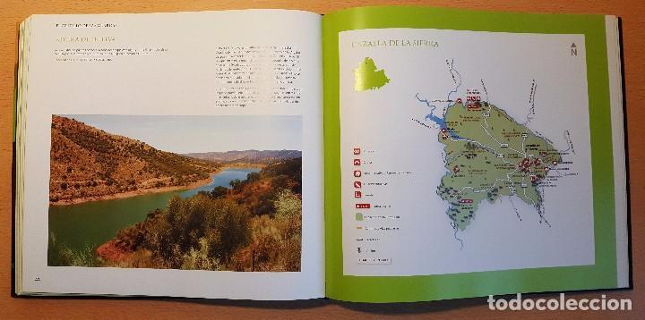 Libros de segunda mano: Catálogo de Espacios Naturales de la Provincia de Sevilla. Diputación de Sevilla - Foto 2 - 239477440