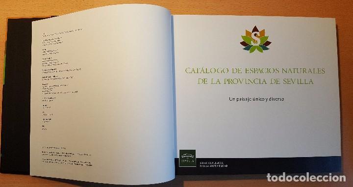 Libros de segunda mano: Catálogo de Espacios Naturales de la Provincia de Sevilla. Diputación de Sevilla - Foto 4 - 239477440