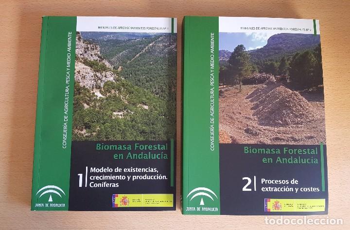 Libros de segunda mano: BIOMASA FORESTAL EN ANDALUCÍA. Existencias, crecimiento y producción. Coníferas Procesos Extracción - Foto 2 - 113743844