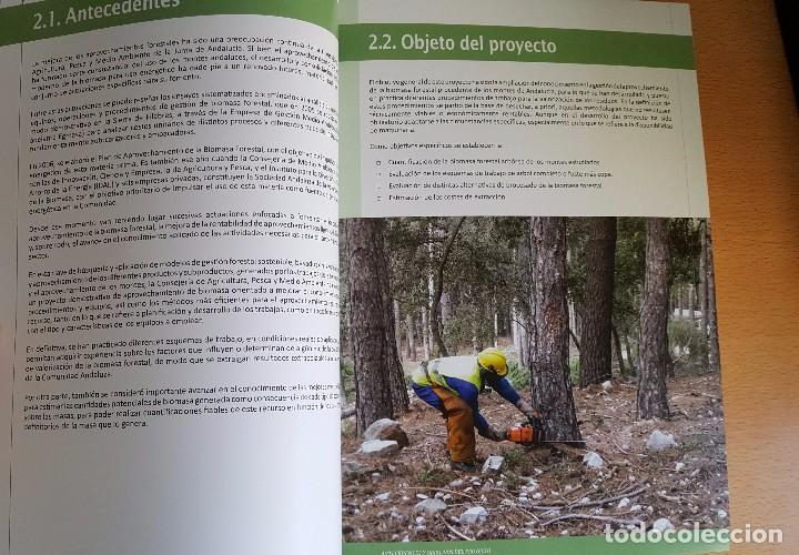 Libros de segunda mano: BIOMASA FORESTAL EN ANDALUCÍA. Existencias, crecimiento y producción. Coníferas Procesos Extracción - Foto 3 - 113743844