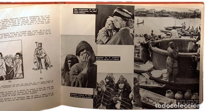 Libros de segunda mano: LIBRO, LAS RAZAS DEL MUNDO. Augusto Panyella - Foto 2 - 99095383