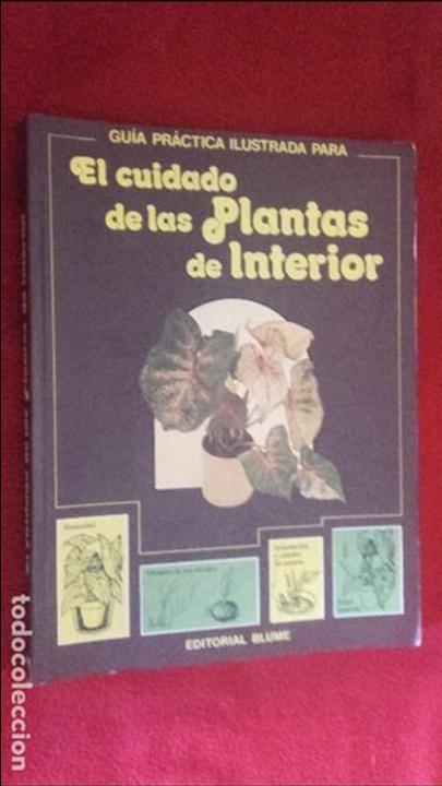 GUÍA PRÁCTICA ILUSTRADA PARA EL CUIDADO DE LAS PLANTAS DE INTERIOR - D. LONGMAN - ED. BLUME (Libros de Segunda Mano - Ciencias, Manuales y Oficios - Biología y Botánica)