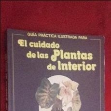 Libros de segunda mano: GUÍA PRÁCTICA ILUSTRADA PARA EL CUIDADO DE LAS PLANTAS DE INTERIOR - D. LONGMAN - ED. BLUME. Lote 99926807