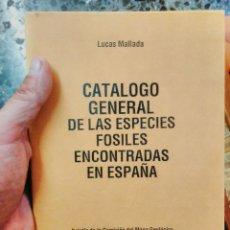 Libros de segunda mano: LUCAS MALLADA.1892 CATÁLOGO GENERAL DE LAS ESPECIES DE FÓSILES ENCONTRADOS EN ESPAÑA.CON LUGARES *. Lote 100375026