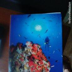 Gebrauchte Bücher - FONDOS MARINOS MURCIA - BUCEO - BIOLOGIA MARINA - SUBMARINISMO - SCUBA DIVING-CARTOGRAFÍA BIONÓMICA - 100521467