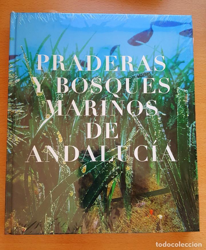 PRADERAS Y BOSQUES MARINOS DE ANDALUCÍA. MEDIO AMBIENTE (Libros de Segunda Mano - Ciencias, Manuales y Oficios - Biología y Botánica)