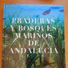 Libros de segunda mano: PRADERAS Y BOSQUES MARINOS DE ANDALUCÍA. MEDIO AMBIENTE. Lote 100526307