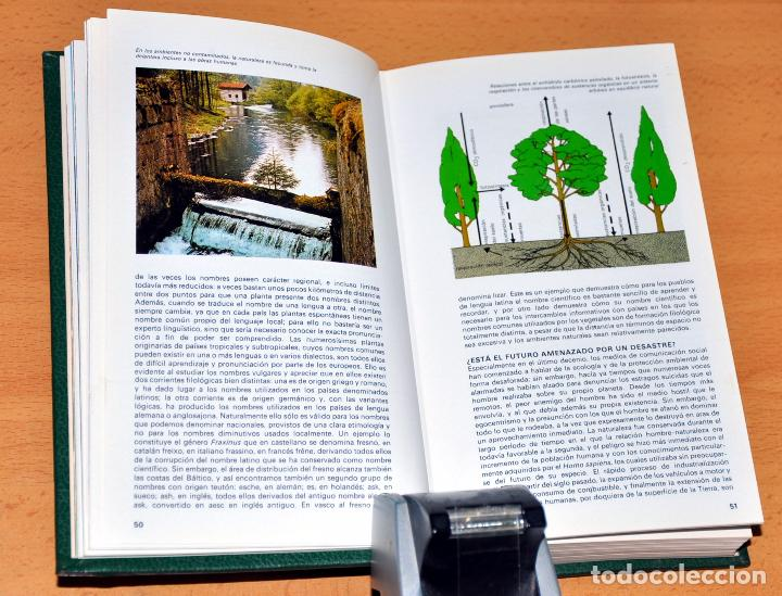 Libros de segunda mano: DETALLE 3. - Foto 4 - 250263875