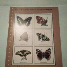 Libros de segunda mano: MARIPOSAS DIURNAS DE MADRID. Lote 101138511