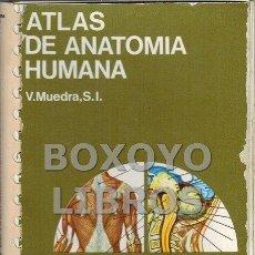 Libros de segunda mano: MUEDRA, V. ATLAS DE ANATOMÍA HUMANA. Lote 101850103