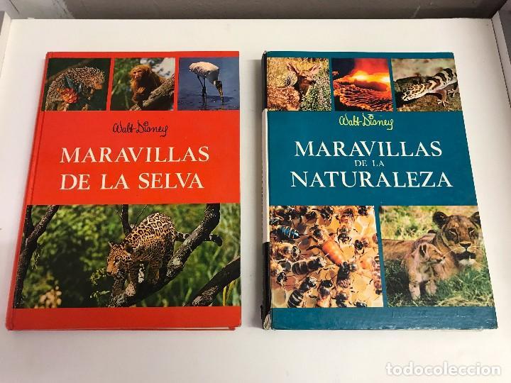 DOS TOMOS: MARAVILLAS DE LA NATURALEZA Y DE LA SELVA. WALT DISNEY. EDICIONES GAISA, 1967, 1968. B.E. (Libros de Segunda Mano - Ciencias, Manuales y Oficios - Biología y Botánica)