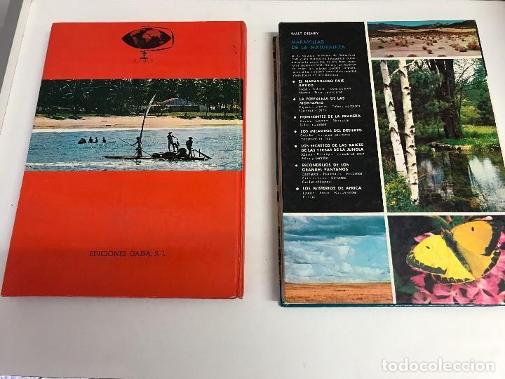 Libros de segunda mano: DOS TOMOS: MARAVILLAS DE LA NATURALEZA Y DE LA SELVA. WALT DISNEY. EDICIONES GAISA, 1967, 1968. B.E. - Foto 2 - 102490203