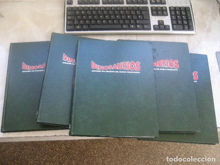 Libros de segunda mano: Dinosaurios Planeta Agostini 5 tomos - PALEONTOLOGÍA - BIOLOGÍA - envío 14,90 + 1 euros CORREOS 72h - Foto 8 - 102600656