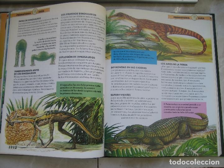 Libros de segunda mano: Dinosaurios Planeta Agostini 5 tomos - PALEONTOLOGÍA - BIOLOGÍA - envío 14,90 + 1 euros CORREOS 72h - Foto 10 - 102600656