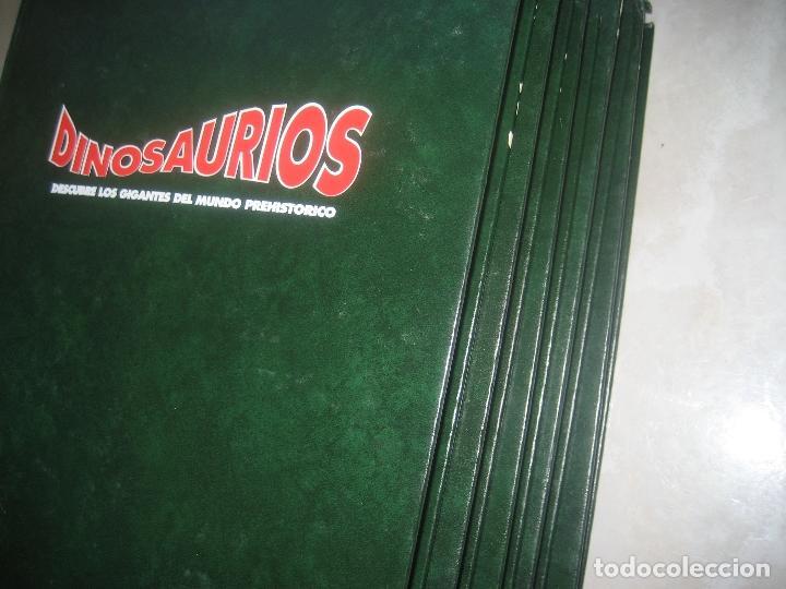 Libros de segunda mano: Dinosaurios Planeta Agostini 5 tomos - PALEONTOLOGÍA - BIOLOGÍA - envío 14,90 + 1 euros CORREOS 72h - Foto 11 - 102600656
