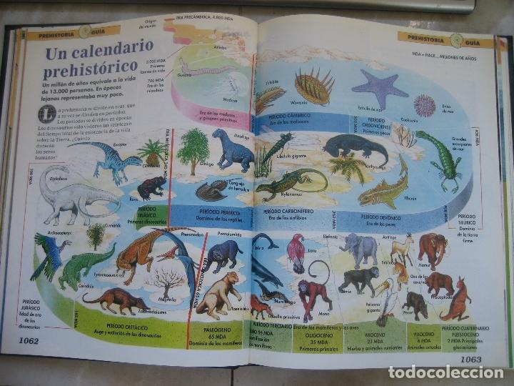 Libros de segunda mano: Dinosaurios Planeta Agostini 5 tomos - PALEONTOLOGÍA - BIOLOGÍA - envío 14,90 + 1 euros CORREOS 72h - Foto 13 - 102600656