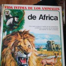 Libros de segunda mano: VIDA ÍNTIMA DE LOS ANIMALES DE ÁFRICA. Lote 102987743