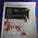 Libros de segunda mano: LA PERFECCION CIENTIFICA EN LAS OBRAS DE ANIMALES. V. MUEDRA. NARRACIONES CIENTIFICO - RECREATIVAS. . Lote 103116519