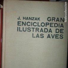 Libros de segunda mano: GRAN ENCICLOPEDIA ILUSTRADA DE LAS AVES, J. HANZAK, ED. CÍRCULO DE LECTORES. Lote 103921551