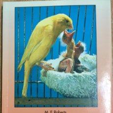 Libros de segunda mano: COMO CRIAR LOS CANARIOS. APAREAMIENTO, CRÍA, DIETA, CUIDADOS. M. F. ROBERTS. ED. HISPANOEUROPEA 2001. Lote 104311707