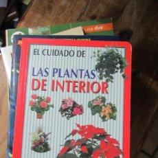 Libros de segunda mano: LIBRO EL CUIDADO DE LAS PLANTAS DE INTERIOR SUSAETA L-1405-352. Lote 104356091