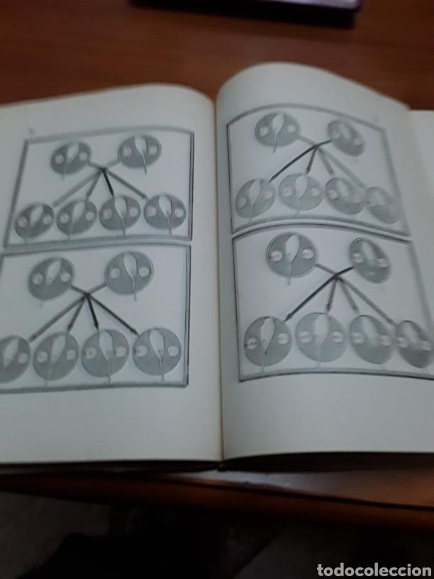 Libros de segunda mano: EL PERIQUITO ,ORIGEN CRÍA ENFERMEDADES AÑO 1954 ANTONIO Y JUAN GARAU SALVA - Foto 3 - 104451946